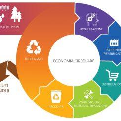 Il ciclo dell'E.C.